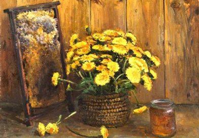 Honeycomb and dandelions